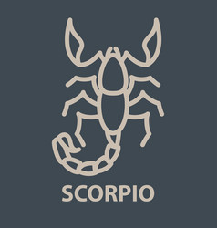 scorpio logo template vector image