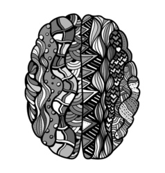 Sketchy human brain vector