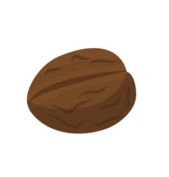 Walnut nuts icon flat style isolated on white vector