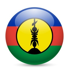 Round glossy icon of new caledonia vector