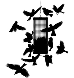 Bird feeder vector