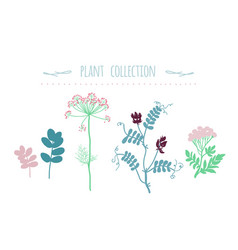 green plants set botanic collection vector image