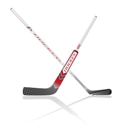 hockey sticks vector image