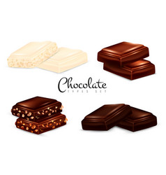 realistic chocolate types set vector image