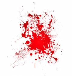 bloody splat vector image