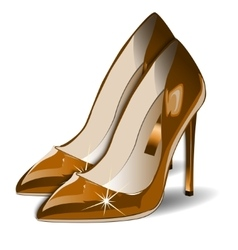 Cartoon gold Women Shoes on white vector image vector image