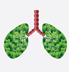 lungs design vector image