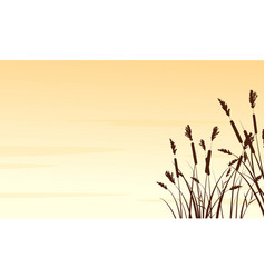 silhouette of coarse grass landscape vector image