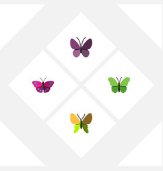 Flat monarch set of violet wing archippus vector