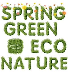 Green Grass Spring and Ecology Word vector image vector image