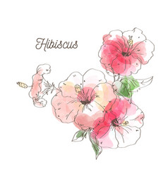 Luxury hibiscus flower on white background vector