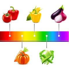 vegetables around rainbow strip isolated vector image