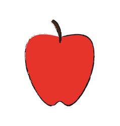 apple fruit sweet vector image vector image