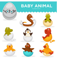 Baby animals hatch eggs cartoon pets hatching vector