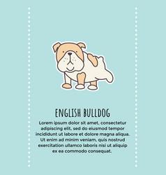 Bulldog banner vector