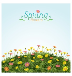 Flowers Spring Field Season Background vector image