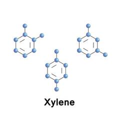 Xylenes are three isomers vector