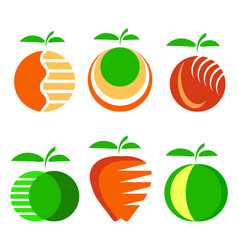 set of different apple fruit icons isolated vector image