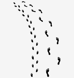 trail of bare feet vector image