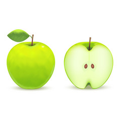 realistic green apple vector image
