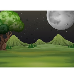 Green field at night time vector image vector image