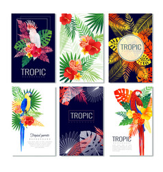 tropical design cards collection vector image vector image