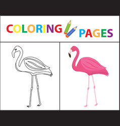 Coloring book page flamingo sketch outline and vector