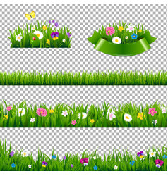green grass borders collection with flowers vector image vector image