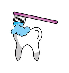 Human tooth with toothbrush vector