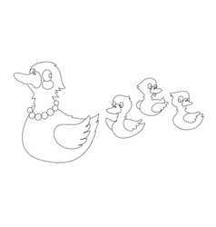 Mother duck with three baby ducks vector image vector image