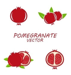 Pomegranate icons set vector image