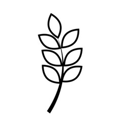 silhouette leaf with ramifications plant vector image
