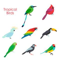 tropical birds icon vector image