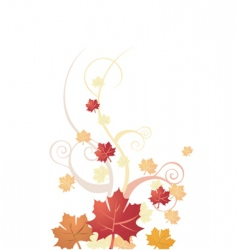 Floral autumn vector