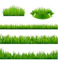green grass borders collection vector image vector image