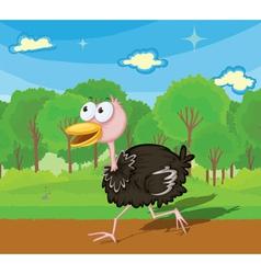 Ostrich running vector
