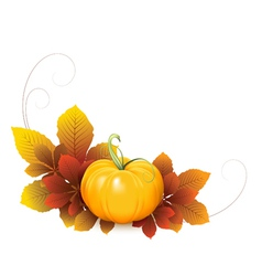 Pumpkin and autumn leaves vector image vector image