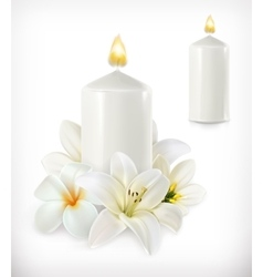 White candle and white flowers vector image