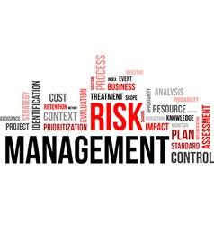 Word cloud risk management vector