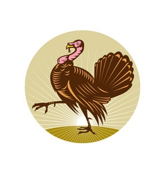Wild turkey walking side view vector
