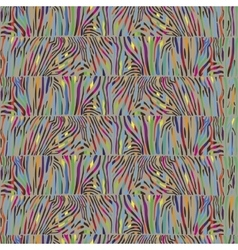 Seamless pattern with multicolored zebra skin vector