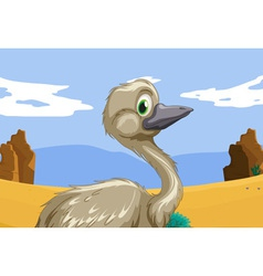Emu in the outback vector