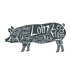 American cuts of pork vector image