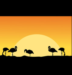 At sunset flamingo on riverbank scenery vector