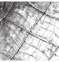 Background Leaf Overlay vector image vector image