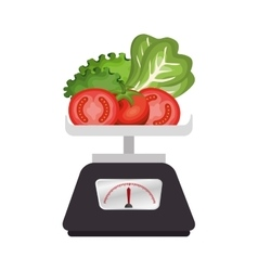Salad vegetables fresh icon vector