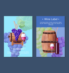vineyard and wine label on vector image