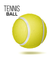 yellow tennis ball isolated realistic vector image