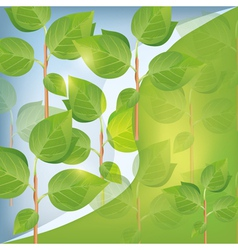 Abstract eco background with plant vector