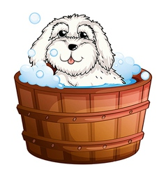 A puppy taking a bath vector image vector image